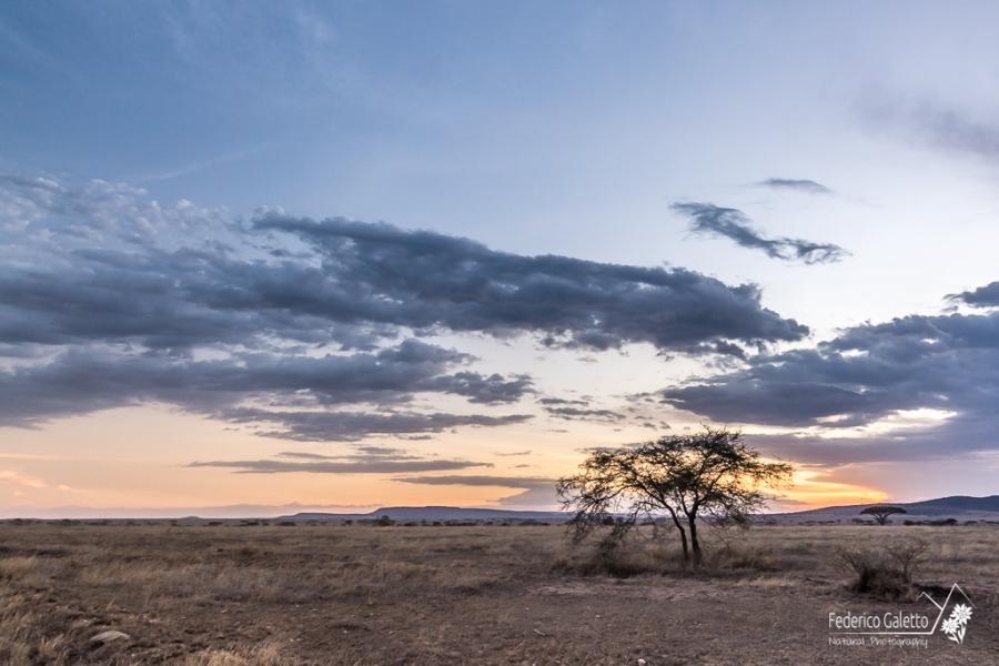 Africa - Tramonto sulla Savana
