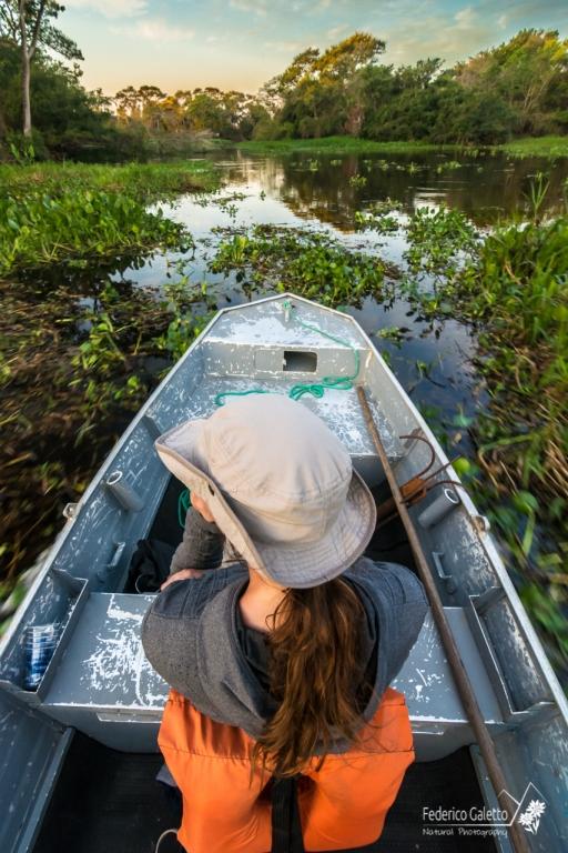 La lancia a motore procede sicura attraversando la tipica vegetazione tropico-fluviale.