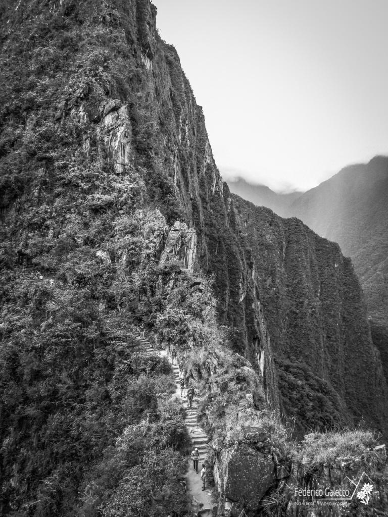 Geometrie e linee sinuose e verticali, per affrontare le vertigini della salita al Huayna Picchu.