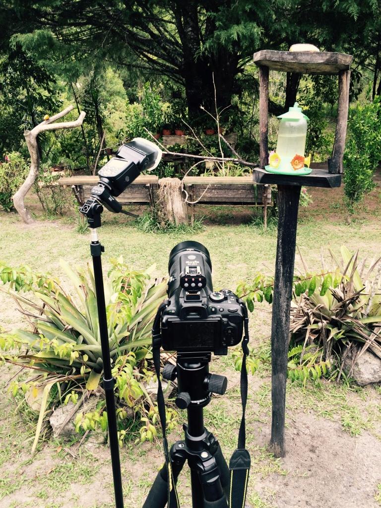 Il set fotografico pronto, in attesa degli amici Beija Flores.